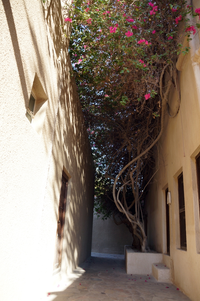 Historic Dubai Alley