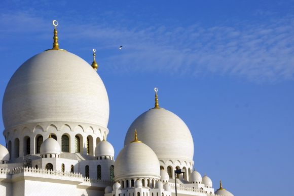 Sheikh Zayed Grand Mosque Domes