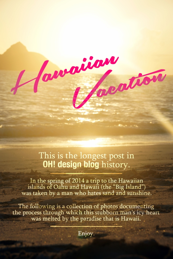 Hawaiian Vacation Intro Image
