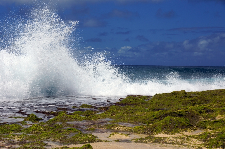 Hawaiian Vacation_Crashing Waves