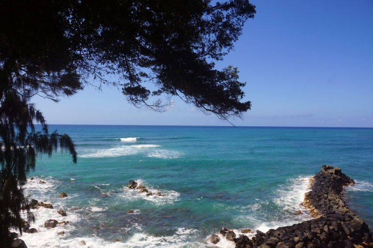 Hawaiian Vacation_Doris Duke Ocean view