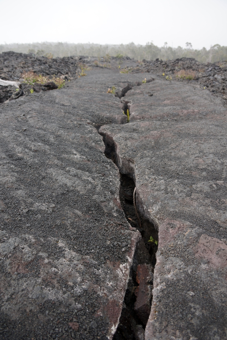 Hawaiian Vacation_Lava Crack