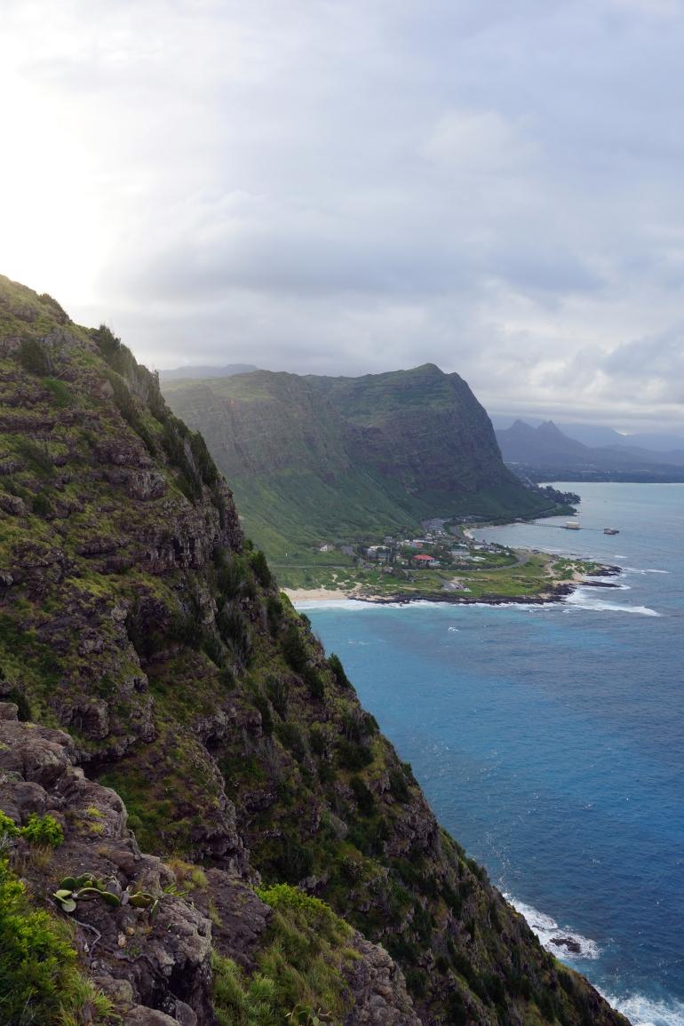 Hawaiian Vacation_Ocean hillside 1