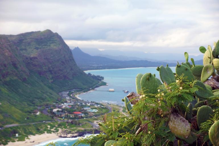 Hawaiian Vacation_Ocean hillside 2