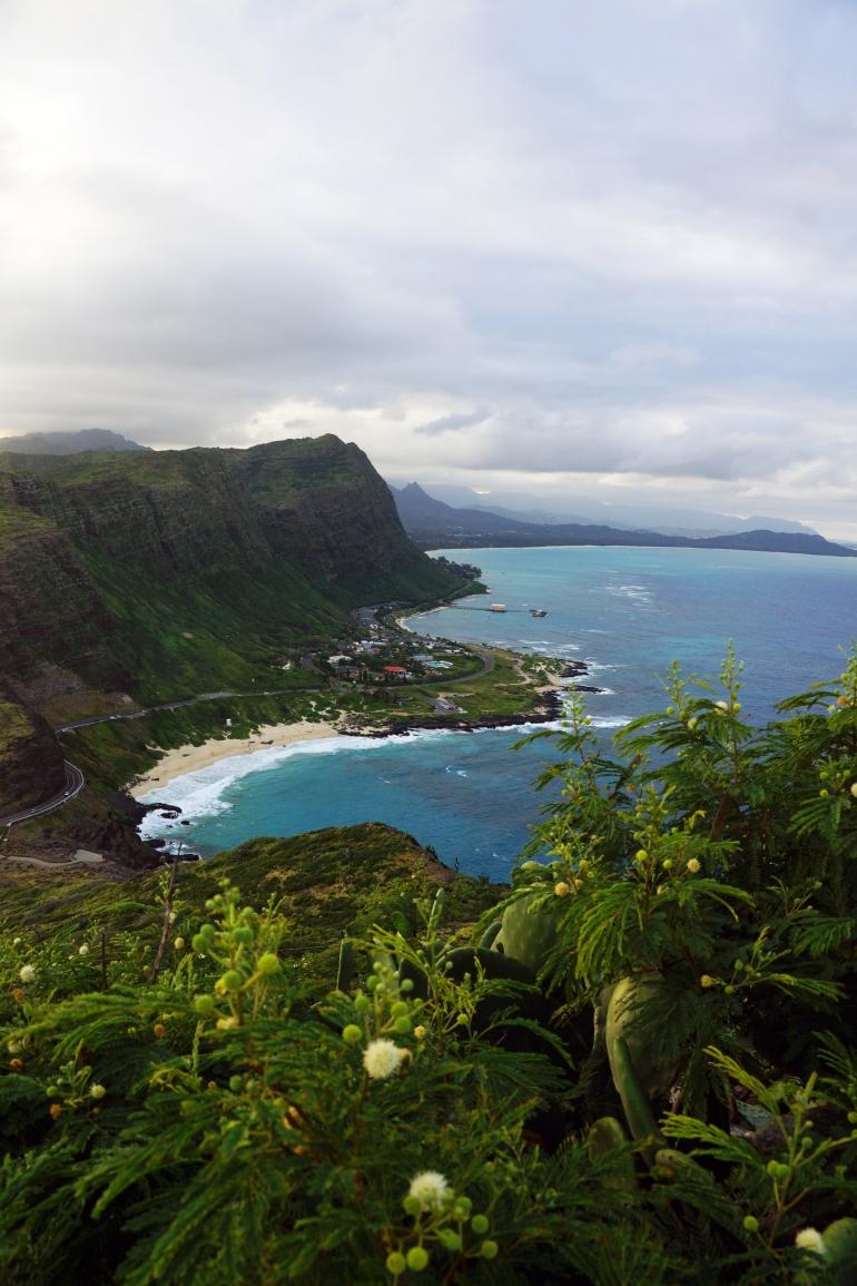 Hawaiian Vacation_Ocen hillside 2