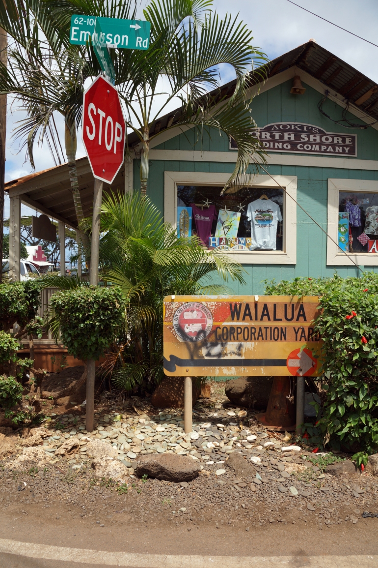 Hawaiian Vacation_Old Shop