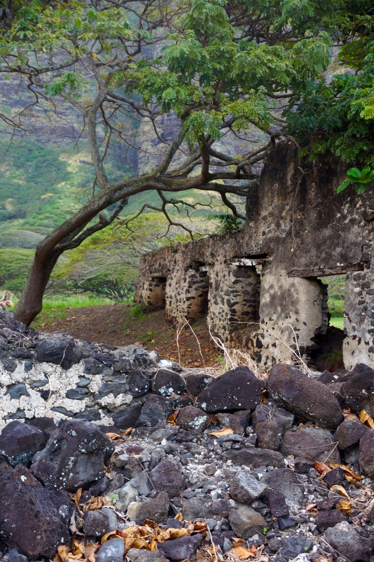 Hawaiian Vacation_Ruins 2