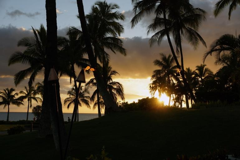 Hawaiian Vacation_Sunset trees