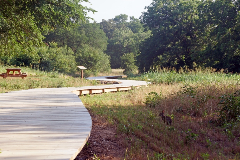 Elmer W Oliver Nature Park_Boardwalk 4