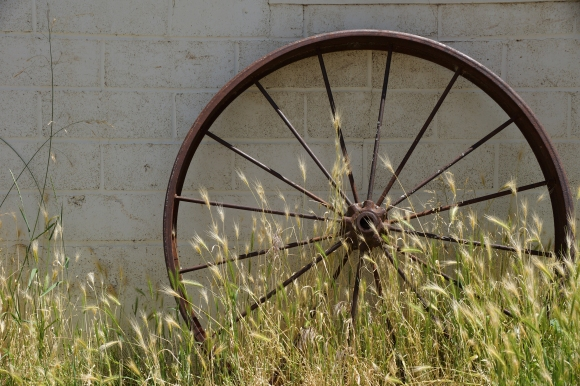 Imperial Stock Ranch_Wagon Wheel