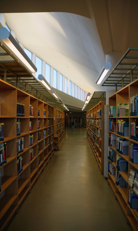 Aalto University_Library Daylighting 2